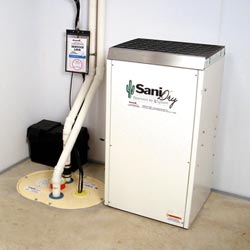 An ENERGY STAR® Rated basement dehumidifier installed in a home in Charleston