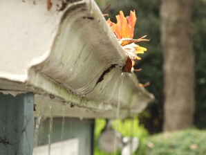West Virginia, Kentucky, Ohio clogged gutters