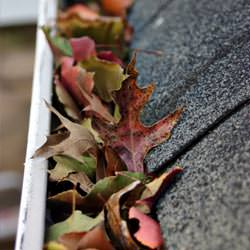 Clogged gutters filled with fall leaves  in Catlettsburg